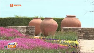 65 години от създаването на Университетската ботаническа градина в Балчик