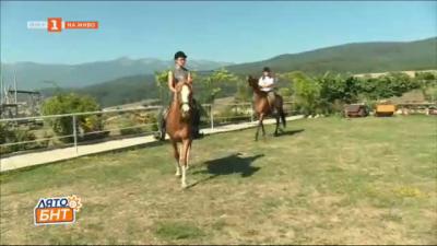На кон през планината - в конната база в разложкото село Бачево