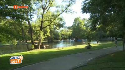 Въжен парк Бачиново в Благоевград