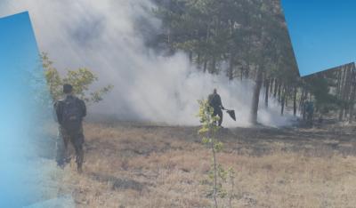 Човешка грешка е причина за пожара край старозагорското село Дълбоки