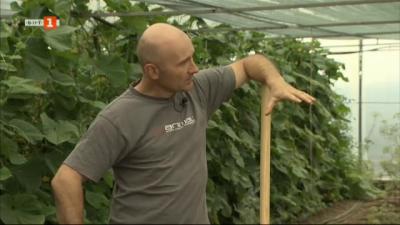 Възстановително земеделие, при което се отглежда почва