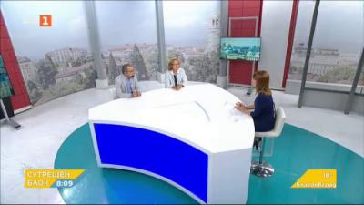 Проектът на ГЕРБ за нова Конституция - анализ на Румяна Коларова и Първан Симеонов