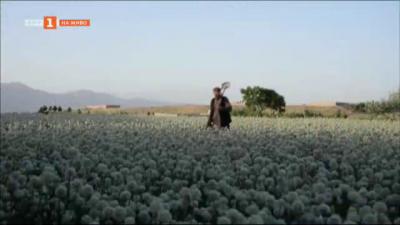 Защо обедняха афганистанците
