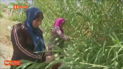 Йордански жени произвеждат хартия от биологични отпадъци
