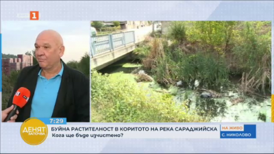 Буйна растителност в река Сараджийска води до излизането ѝ от коритото при дъжд