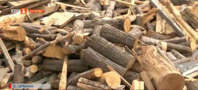 Раздават дърва за огрев на нуждаещи се семейства в с. Црънча