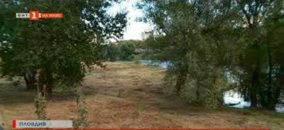 Има ли санитарна сеч и почистване в поречието на Марица в Пловдив