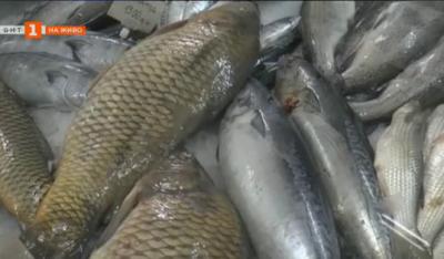 Какви риби купуват хората преди Никулден?