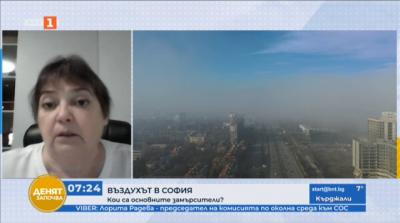 Лорита Радева: Най-голямото замърсяване се дължи на продуктите на битовото горене