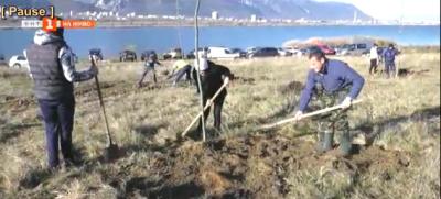 Преди Никулден рибари залесиха района около яз. Дъбника край Враца