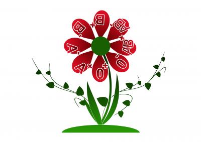 Търсят се доброволци за даряване на кръв за животоспасяваща плазма в Русе