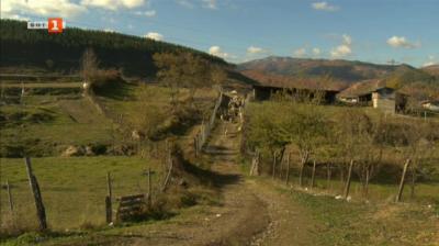Крупник - селото с най-много животновъди в Югозападна България