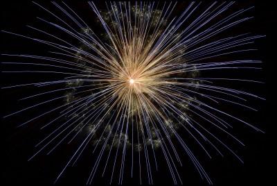 Фойерверки и стрелба с огнестрелно оръжие всяват паника и отнемат животи по време на празниците