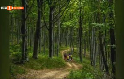 Организиран туризъм в Еленския Балкан