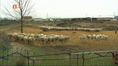 """На гости отново в ТКЗС """"Кефа на шефа"""" в село Строево"""