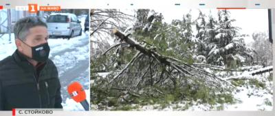 Близо 40 села останаха без ток в Хасковско