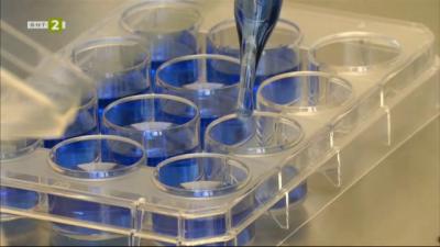 Коктейл от бактерии разгражда пластмасата