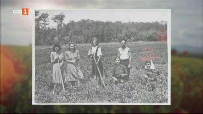 Български визуален архив - фотопроект за обикновеното семейство през 20 век