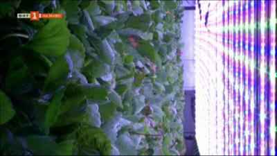 Презареждане: Локалното градско земеделие с нисък въглероден отпечатък и бързи доставки на плодове и зеленчуци