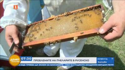 Пчелари от Русе подкрепят протестните искания на колегите си от страната