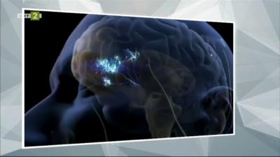 Невромаркетинг - как компаниите изучават мозъка на потребителя с цел печалба