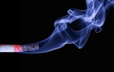 Д-р Маша Гаврилова: Над 20% са отказалите се пушачи