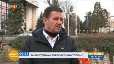 Кметът на Хасково: Всяка премахната топола ще бъде заменена с нова