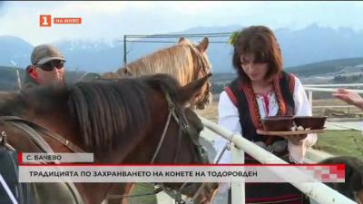 Захранването на конете - традиция на Тодоровден