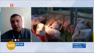 Търговията със свинско месо - казуси и решения