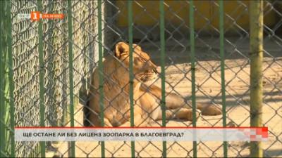 Ще остане ли без лиценз зоопарка в Благоевград