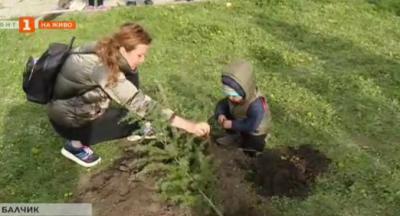 Залесяват новия парк Балик в Балчик