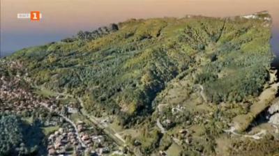 Седмицата на гората във Врачански балкан