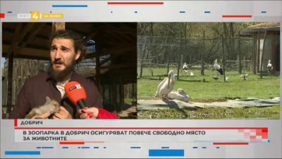 В зоопарка в Добрич осигуряват повече свободно място за животните