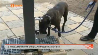 В Ямбол монтират специални чешми за кучета