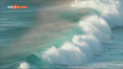 Как океаните и горещите гейзери лекуват най-разпространените на сушата болести?