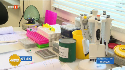 Вината на гените: защо мъжете боледуват по-често от Ковид