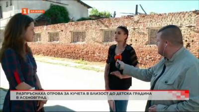 Разпръснаха отрова за кучета близо до детска градина в Асеновград