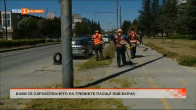 Бави се обработването на тревните площи във Варна