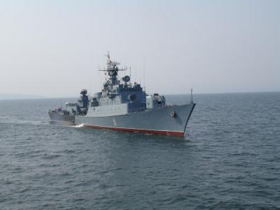 Бойните сили на флота