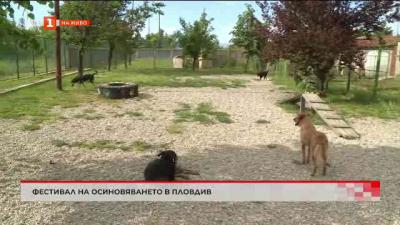 Фестивал на осиновителите на кучета
