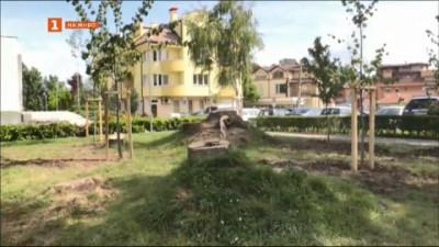 Протест срещу изсичане на дървета в центъра на Кюстендил