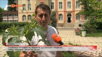 Глобиха активисти, решили са окосят тревата пред община Красно село
