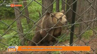 На гости Парка за танцуващи мечки в Белица