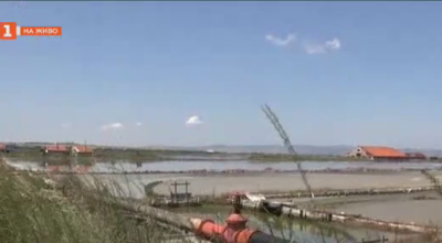 Заплашено ли е Атанасовското езеро от екокатастрофа?