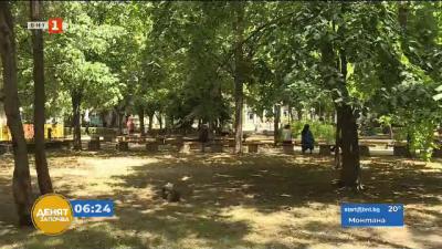 Опасно високи температури в Югозападна България