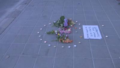 Кола на МВР уби дете на пешеходна пътека