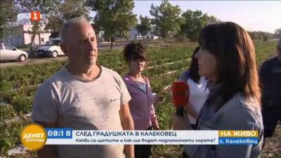 След градушката в Калековец: Какви са щетите и как ще бъдат подпомогнати хората?