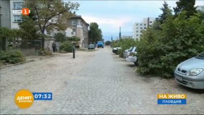 По зрителски сигнал - отсечени дървета в район Западен в Пловдив