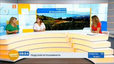 Отказ на подслон в планината - позицията на Мира Добрева и Десислава Христозова