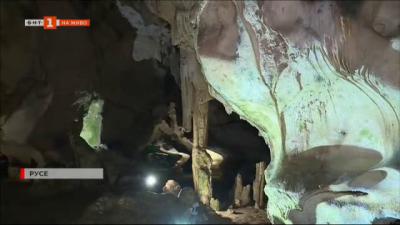 14 вида прилепи живеят в пещарата Орлова чука
